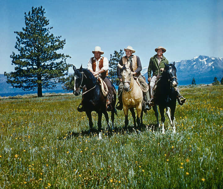 Bonanza In Color