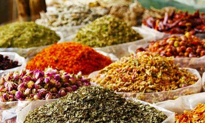healthiest spices