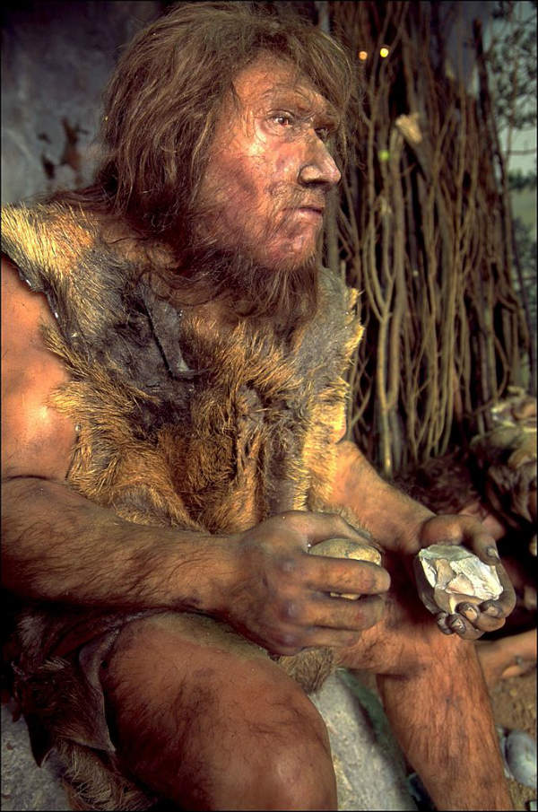 neanderthal archaeological