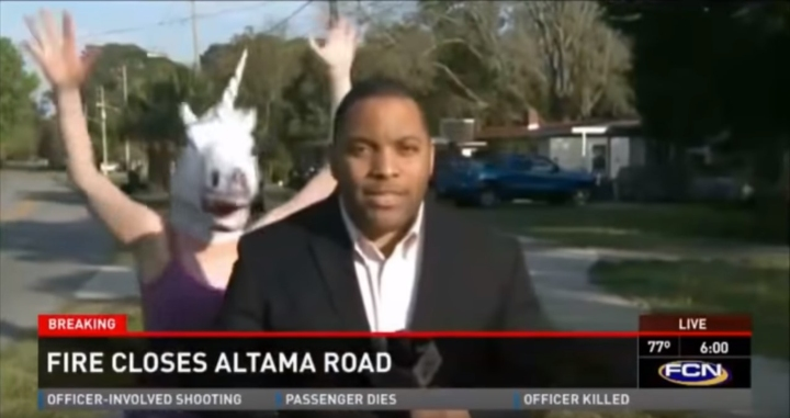 News anchor interrupted by person in unicorn mask
