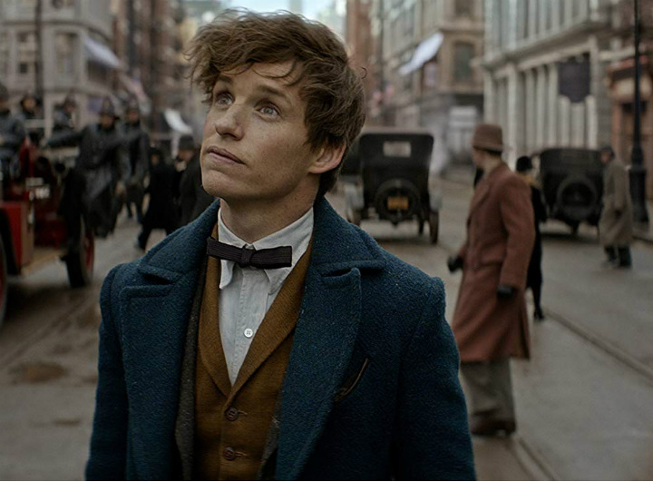 Fantastic Beasts and Where to Find Them 3 -Eddie Redmayne