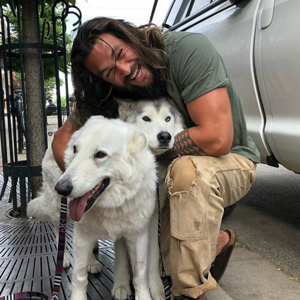 Jason Momoa and His Malamutes