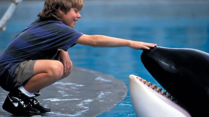Free Willy, hilarious titles