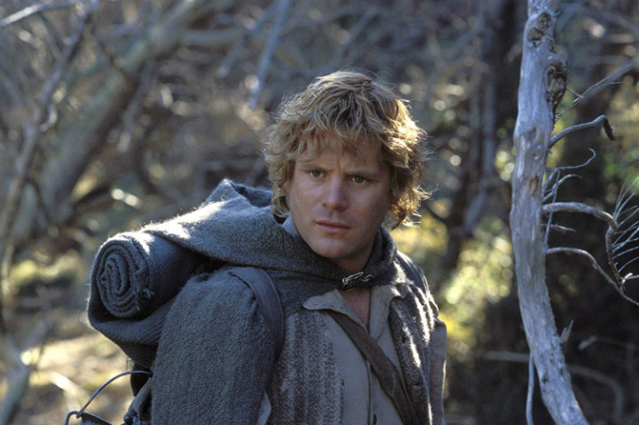 Lord of the Rings Sean Astin underpaid actors low salaries