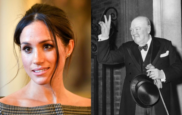 meghan markle and winston churchill, historical ancestor